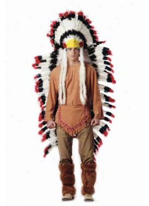 Indian Headdress Picture Funky Cool