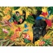 Jungle Prince Jigsaw Puzzle 60pc