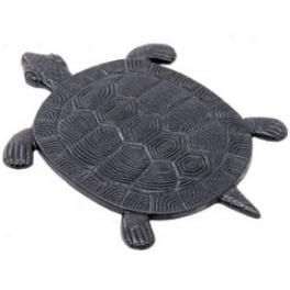4 Stepping Stones Tortoise