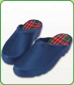 Blue Clogs