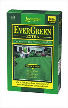 Evergreen Extra 240 Sq M