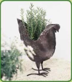 Rust Planter Chicken
