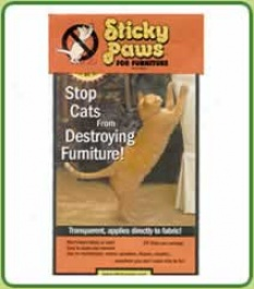Sticky Paws (stop Scratching!)