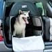 Dog Bag (extra Litle)