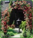Garden Arch With 2 Climbing Scarlet Roses