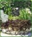 Ornamental Fountain Pool