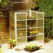 Polycarbonate Patio Greenhouse