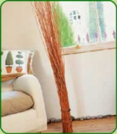 Willow Twig Bundle