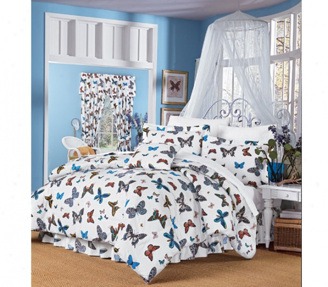 Flight Of Fahcy Comforter Set
