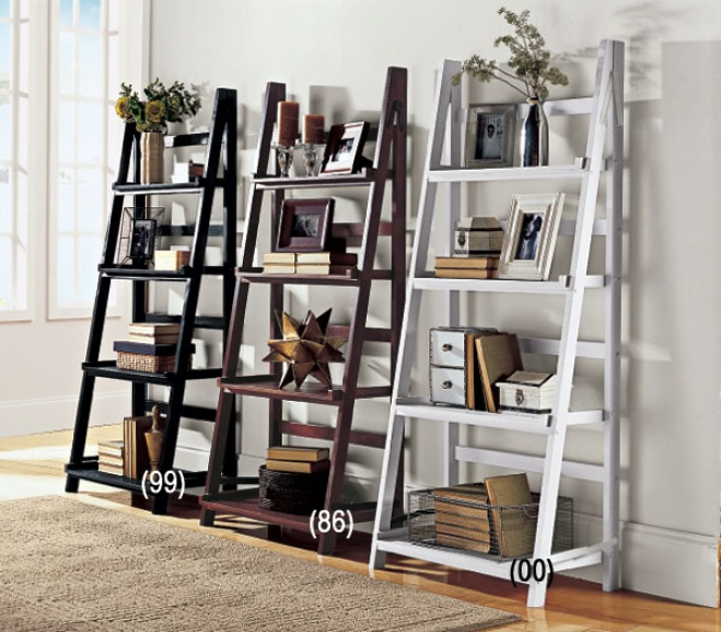 Picture of Ladder Style Bookcase @ Images Nation dot com