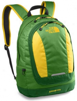 TheN orth Put a ~  Daypacks Vault Backpack Rubicon Inexperienced #aj3l-1e7